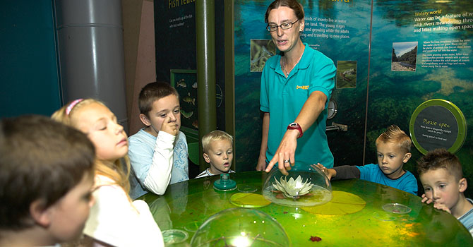 Learning about the environment in the Discovery Centre