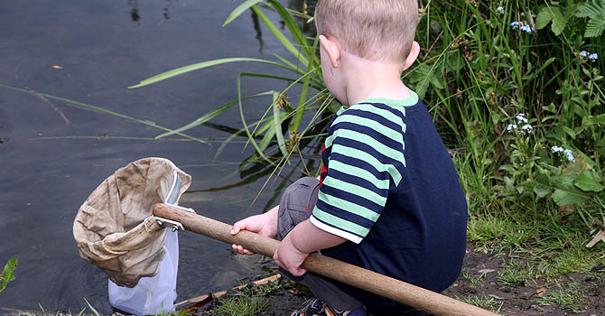 Pond dipping with the Rangers