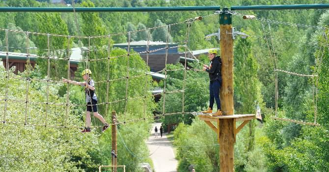 High and Low Ropes Adventure